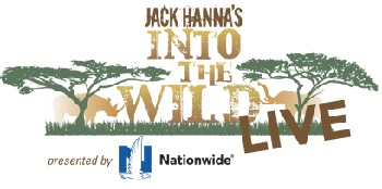 Into The Wild LIVE logo